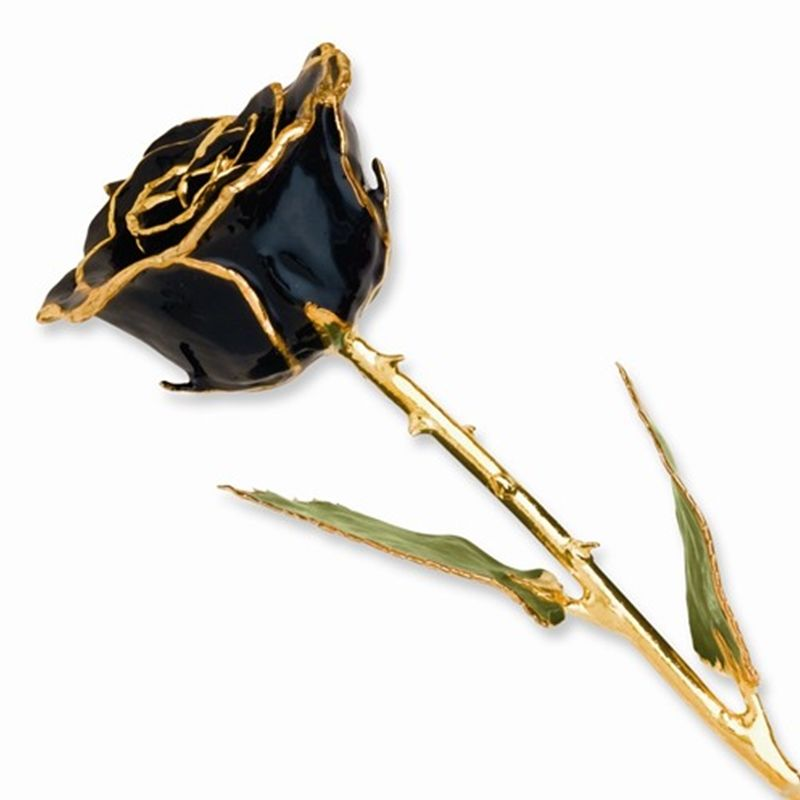 Lacquer Coated Real BlackRose Dipped in Gold