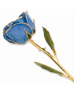 Gold Dipped Authentic Blue Rose with Lacquer Finish
