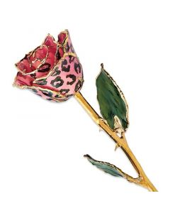 Lacquer Coated Pink & Black Leopard Rose Dipped in Gold