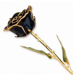 Lacquer Coated Real Black Rose Dipped in Gold