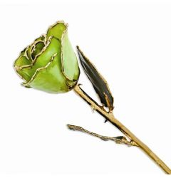 Lacquered Peridot Rose Dipped in Gold